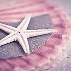 Starfish by ♛ VIAINA