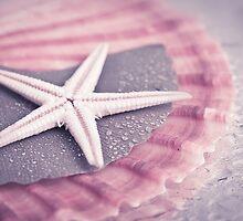 Starfish by ♛ VIAINA