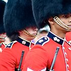 Changing of the Guard Ceremony on Parliament Hill by Valerie Rosen