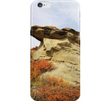 Writing-on-Stone in Autumn iPhone Case/Skin