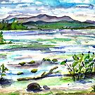 View from Sand Bar - Lake Champlain, VT. by mleboeuf