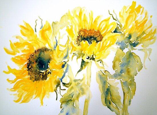 Sun Sisters by Ruth S Harris