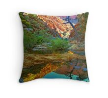 Rockpool relections, Central Australia. Throw Pillow