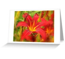A Soft Touch  Greeting Card