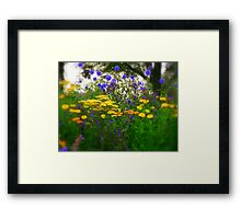 Multicoloured Flowers  Framed Print