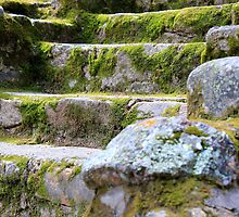 Steps to The Shire by Ken Fleming