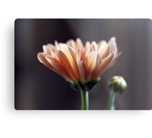 In your place of humility Metal Print