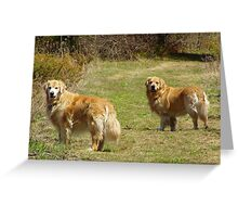 Finally! I have their attention! Featured Photo Greeting Card