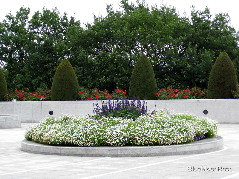Floral Elegance - Roses, Sculpted Trees and Flowerbed by BlueMoonRose