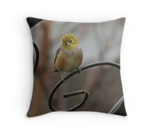 Little Waxeye on Rose Arbour Throw Pillow