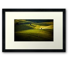 Greens and Golds Framed Print