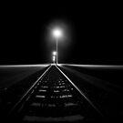 Light Rails by Pene Stevens