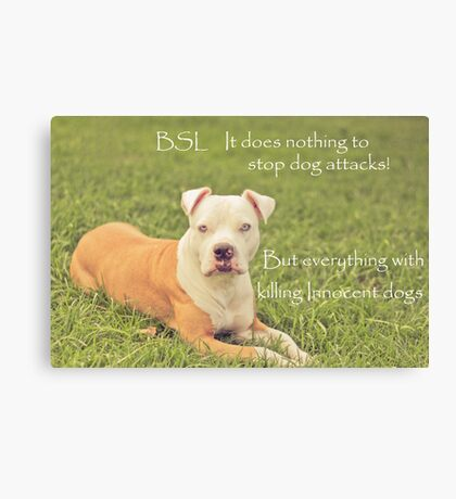 A Definition Of Breed Specific Legislation Canvas Print