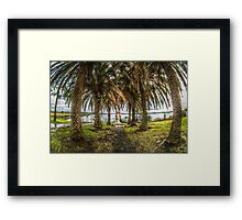 Pathway HDR Framed Print