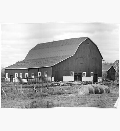 Farmyard in B&W Poster