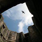 Warkworth Castle by Alison Ward
