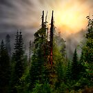 Light Me Up ~ Oregon High Cascades ~ by Charles &amp; Patricia   Harkins ~ Picture Oregon