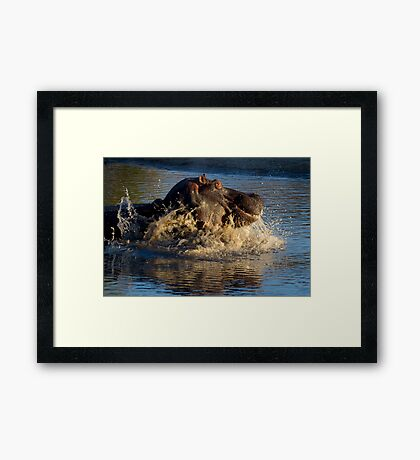 Unhappy Hippo Framed Print