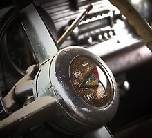 Steering in the Past by Jeffrey J. Miller