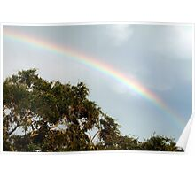 Strong rainbow Poster