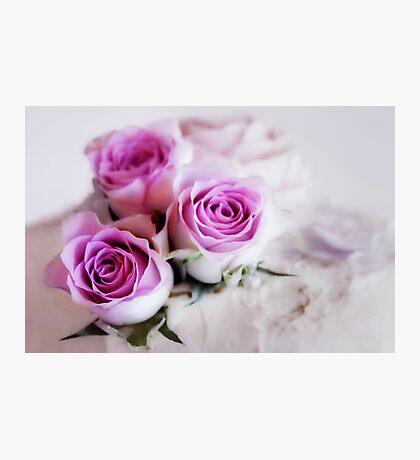 Fleur VI Photographic Print