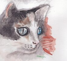 Feline beauty by acquart