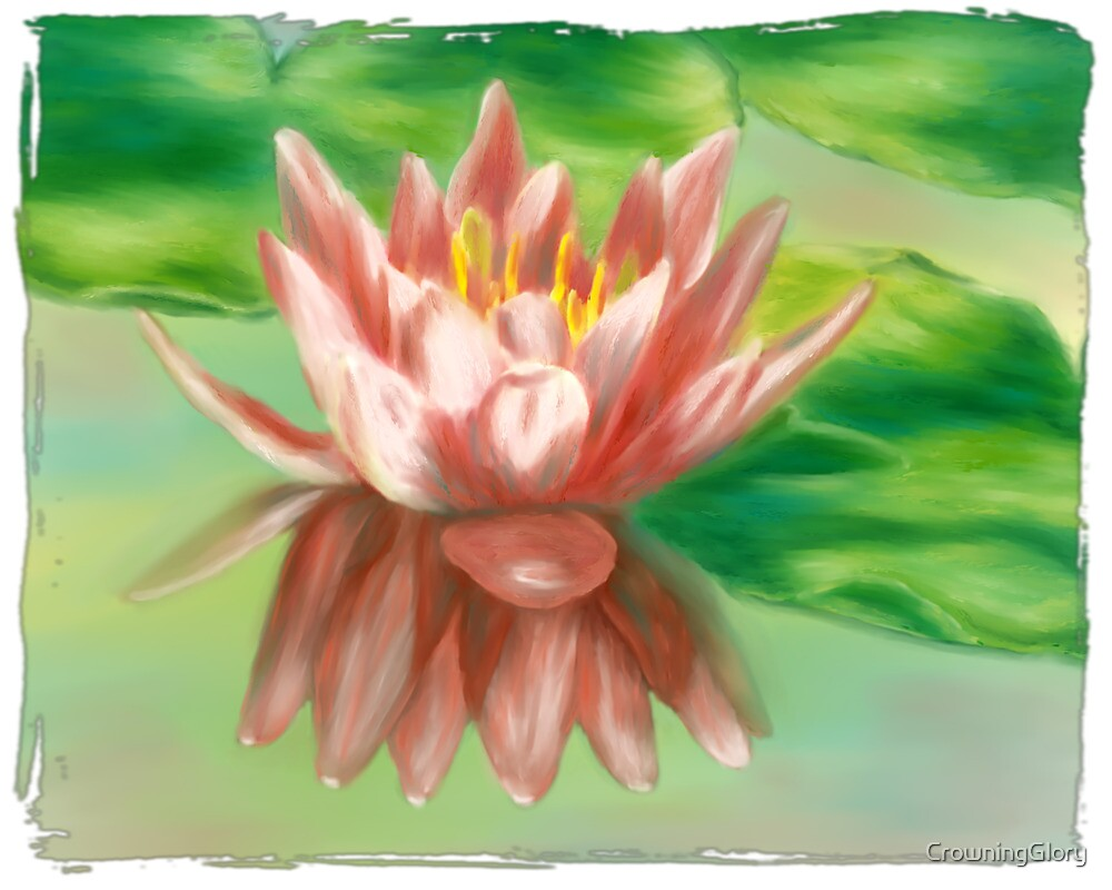 Peaches And Cream Waterlily by CrowningGlory