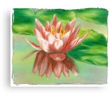 Peaches And Cream Waterlily Canvas Print