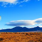Desert Windmill by Roads Not Traveled by Ric J