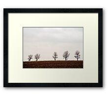 Five trees Framed Print