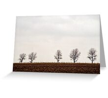 Five trees Greeting Card