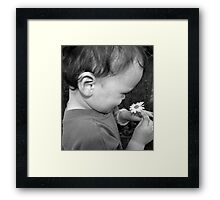 2 Small Things make the world seem such a beautiful place  Framed Print