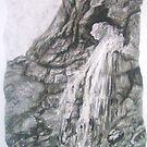 Gordale Waterfall by Susan Duffey
