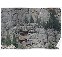 Trees Among Rocks Poster