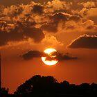 Sunset by camerawoman1
