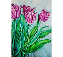 Fractured Tulips Photographic Print