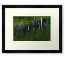 Summer Trees Reflection Impressisim Framed Print