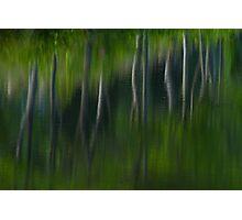 Summer Trees Reflection Impressisim Photographic Print