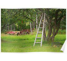 Climb Up My Apple Tree Poster