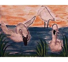 The Flock, watercolor Photographic Print