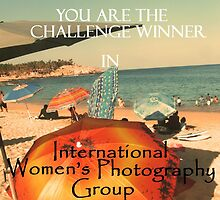 International Women's Photography Challenge Banner by Bernadette Claffey