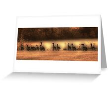 Canada Geese Down by the River Greeting Card