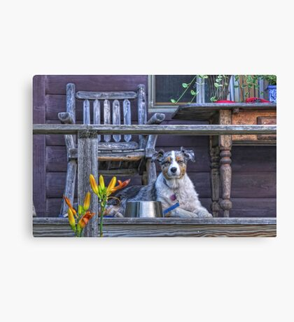 Misty on Vacation Canvas Print