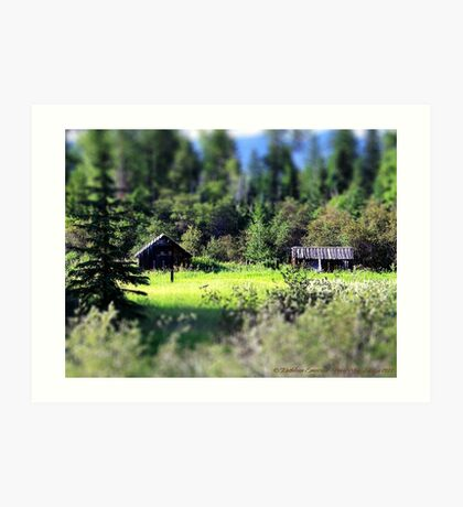 Whitefish Homestead (Montana, USA) Art Print