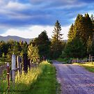 Farm Access Road by rocamiadesign