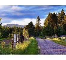 Farm Access Road Photographic Print