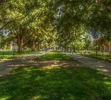 Mrak Hall Walkway by JT Valine