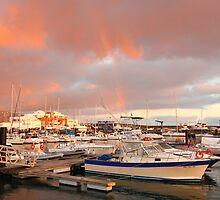 Marina in the Azores by Gaspar Avila