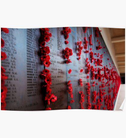 Canberra War Memorial Poppys Poster