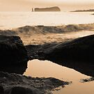 Seascape in sepia tones by Gaspar Avila